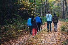 Var med och vandra jorden runt för att väcka uppmärksamhet om pankreascancer