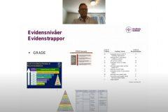Se inspelning från webbinarium om evidensbaserad vård och alternativa behandlingar