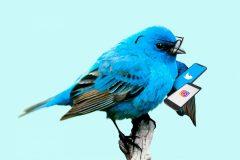 Nu kör vi igång Twitter och Instagram