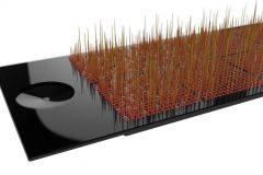 Spännande ny teknologi för tidig upptäckt av bukspottkörtelcancer
