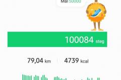 Dagen efter de 100.000 stegen