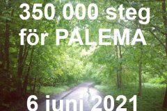 350 000 STEG FÖR PALEMA